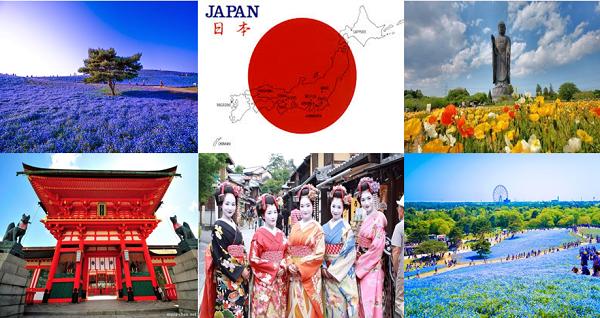 Đi du học Nhật bản vào ngành du lịch thì nên chọn trường nào ...